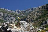 Stari Bar and the Rumija Mountains