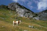 Upper Ališnica Valley