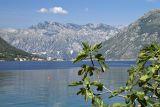 Bay of Kotor at Dobrota