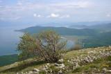 Lake Prespa, from Galičica
