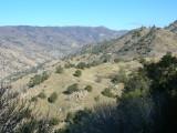 Lower Kern Canyon