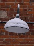 Cossetta's Lamp
