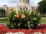 Capitol Flowers