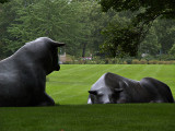 Wonderful Cow Sculptures.jpg