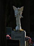 Safe Passage Angel