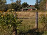 Little Red House-Barn