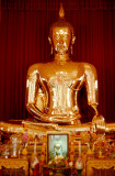 The Golden Buddha ...