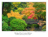 Bridge Over Colored Water.jpg