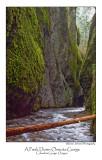 A Peek Down Oneota Gorge.jpg