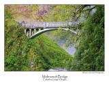 Multnomah Bridge.jpg (Up To 20 x 30)