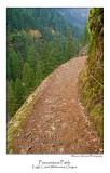 Precarious Path.jpg