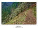 Trail View 2.jpg