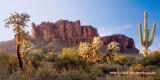 Desert Scene ADJ.jpg