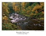 Wahclella Falls Creek.jpg