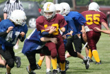 Cowichan  Bulldog  Football Gallery