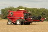 Harvest Scenery4.JPG