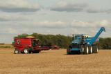 Harvest Scenery5.JPG