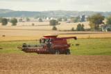Harvest Scenery13.JPG