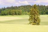 Agricultural landscape Rakkestad, Østfold, Norway #1