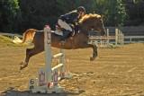 Golden Jumper