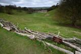 Dyrham Park  13_d800_0008