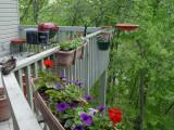 DSC02282 Deck from Rail