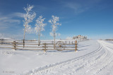 Fresh Snow at the Ranch House