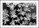 Frosty car window