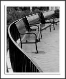 Black Benches