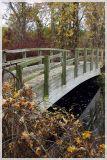 Mingo Swamp Boardwalk Bridge