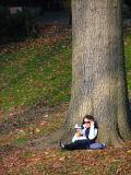 Autumn Central Park NYC Manhattan New York