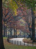 Autumn Central Park NYC Manhattan New York 2