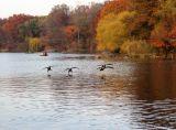 Autumn Central Park NYC Manhattan New York 3