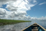Rio Amazona
