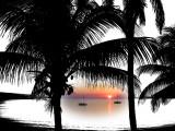 Eleuthera Bahamas 2001 - 2006