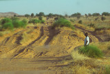 Deeply rutted sand track between Mali and Niger