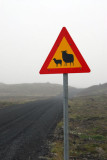 Sheep warning sign, Iceland