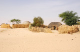 Nomad huts in the Sahara on the edge of Timbuktu