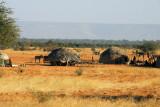 Nomad huts, central Mali