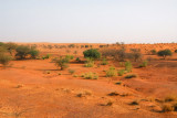 East of Mont Hombori on the way to Gao, the scenery reverts to that more typical of the Sahel, Eastern Mali