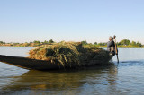 Cargo pirogue transporting a load of animal fodder