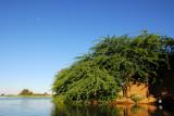 Niger River, Ayorou