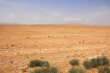 Syrian desert enroute to Palmyra