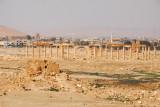 The first sighting of the main ruins at Palmyra