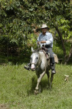 Villager on horse