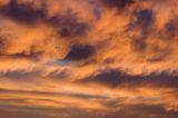 A little sunset glory II