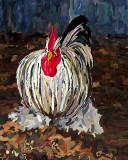 a chicken 8x10.jpg