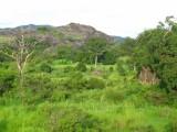 Lui landscape