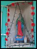 2007 Isla de Mujers trip CanCun