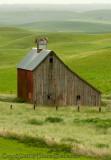 Barn in Green Field Portrait